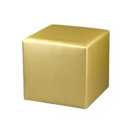 pufa pinna gold 1